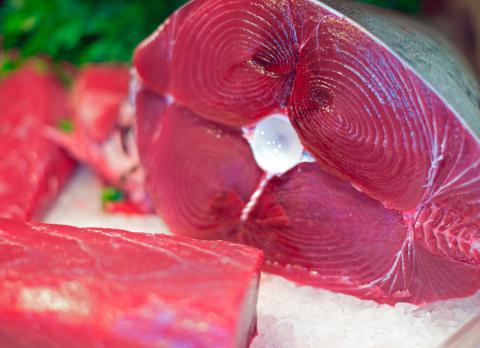 Atún rojo crudo, es un alimento que debes evitar si estás embarazada